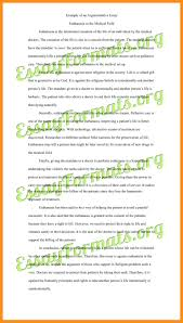 writing an argument essay agenda example writing an argument essay argumentative essay example jpg