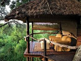 2436 Best TREE HOUSES Images On Pinterest  Treehouses Treehouse Hotel Africa