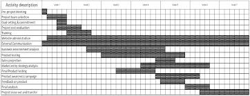 Gantt Chart For New Product Launch Avamyslaunch Launching Avamys Page 2