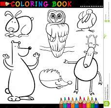 Colorantes Animales L Duilawyerlosangeles Colorantes Animales L