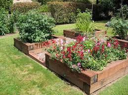 Small Picture Raised Beds for Easy Low Maintenance Backyard Gardens