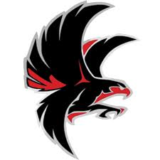 Atlanta Falcons Png Logo - Free Transparent PNG Logos
