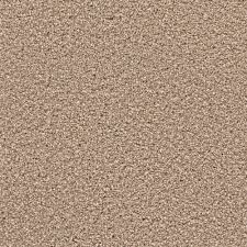 home decorators collection carpet sample expeditious ii color