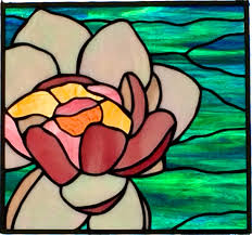 water lily diana cole 2016