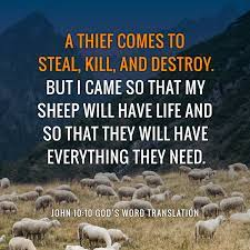 Comparing John 10:10 I came so that my sheep will have life – God's Word  Mission Society