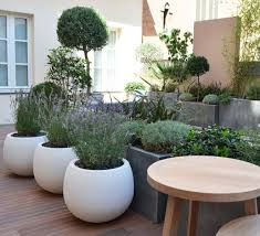 Small Picture 25 best Patio gardens ideas on Pinterest Apartment patio