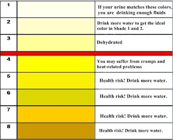 Dehydration Chart Urine Color Are You Dehydrated