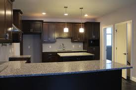 grey kitchen cabinet transpa glass vase with yellow flower brown granite countertops cabinets choose between light