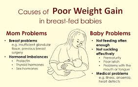 Average Weight Baby Infant Baby Care