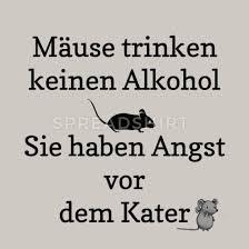 Lustiger Alkohol Maus Katze Humor Spruch Geschenk Kissenhülle