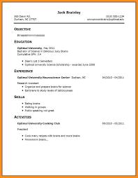 7 Work Experience Resume Examples Agenda Example