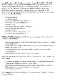 Spreadsheet Skills Resume