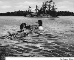 Wildlife   jack's lake history
