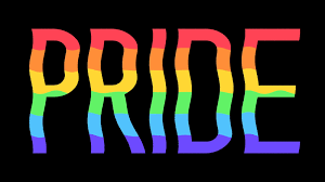 Image result for gay pride