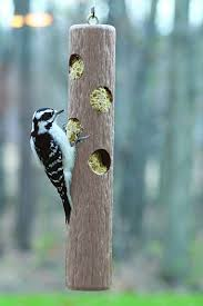Image result for wood log for suet