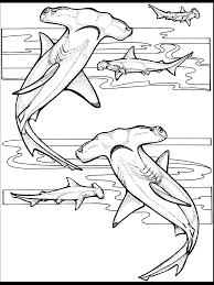 Free Ocean Coloring Pages 7