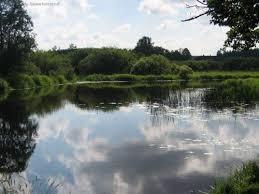 Старобільською місцевою прокуратурою повернуто земельну ділянку водного фонду у власність держави
