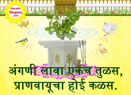 Plantation Slogans वकषरपण घषवकय In Marathi