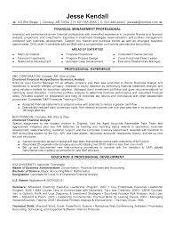 Job Resume Financial Analyst Resume Sample Junior Financial