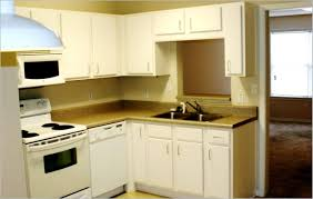 For Small Apartment Kitchens Small Apartment Kitchen Design Ideas 24 Interior In Indian