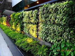 vertical gardening systems vertical