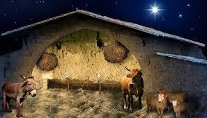 christmas stable. Interesting Christmas Christmas Stable Print Photography Backdrop To E