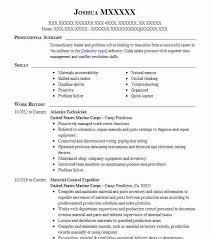 Avionics Technician Resume Sample Technician Resumes