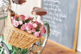 """Résultat de recherche d'images pour """"flowers in a bike"""""""