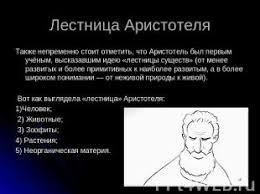 Презентация на тему Аристотель Заслуги в биологии скачать  слайда 9 Лестница Аристотеля Также непременно стоит отметить что Аристотель был первым у