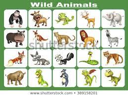 wild animals chart. Fine Animals 3d Rendered Illustration Of Wild Animal Chart For Wild Animals Chart I