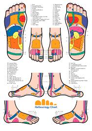 Eunice Ingham Reflexology Chart Map By Eunice Ingham Every Organ In The Body Has Its Reflex