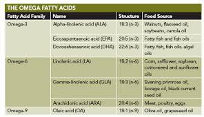 Ingredients And Formulation Understanding Omega 3 Fatty Acids