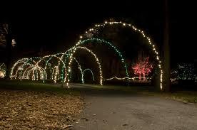 Driveway Tunnel Christmas Lights Diy Christmas Light Arches Diy Christmas Lights