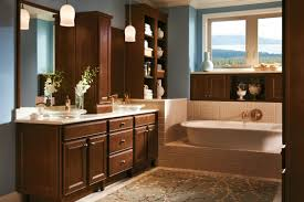Cabinets To Go Bathroom Interior Design Inspiring Kitchen Storage Ideas With Exciting