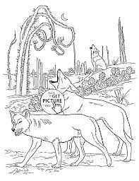 Small Picture Coyotes animal coloring page for kids wild animal coloring pages