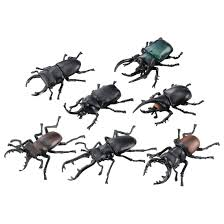 アニアくじ④ 森林の王者 昆虫コレクション