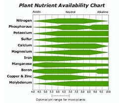 Cannabis Ph Chart How To Grow Weed Basics Tutorial Part 5 Growing With Soil