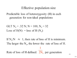 effective population size definition alleles a a genotypes aa aa aa ppt video online download
