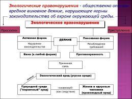Экологические правонарушения понятие виды и состав экологические правонарушения понятие виды и состав