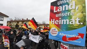 Image result for Racist German demonstrations