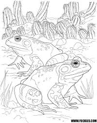 Small Picture frog and toad coloring pages frog and toad together coloring page