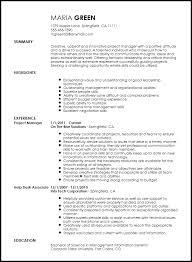 Delightful Decoration Project Management Job Description Resume
