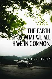 40 Best Environmental Quotes To Inspire You To Help Save Our Planet