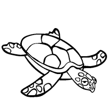 Sea Turtle Coloring Page | Animal Coloring pages of ...