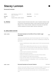 Personal Assistant Resume Writing Guide 12 Templates