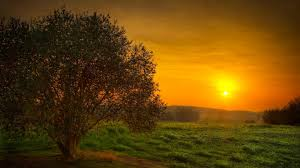 sunrise sunset nature sun hd wallpaper beautiful 3d nature wallpaper1 hd wallpapers