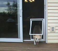 sliding screen doggie door best screen door design latest door amp stair design sliding door screen sliding screen doggie door