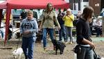 Liz Hurley at village show where her dog wins prize