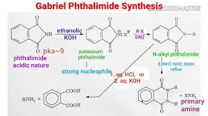 Primar Charts Animation Gabriel Phthalimide Synthesis Mechanism
