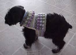 Free Crochet Dog Sweater Patterns Magnificent SAWYER'S DOG SWEATER Crochet Pattern Free Crochet Pattern Courtesy